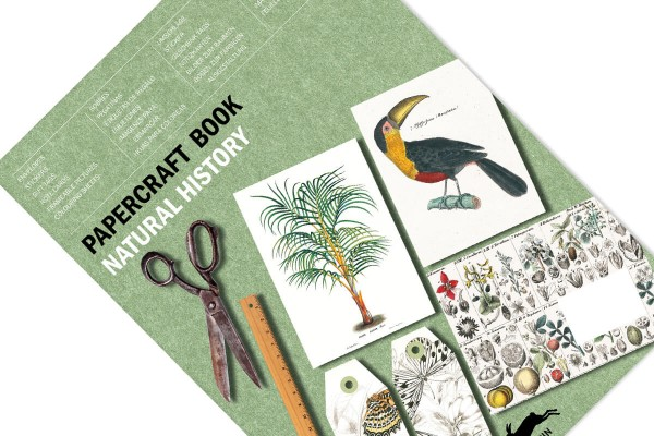 pepin paper craft natural history cover 600x400 1